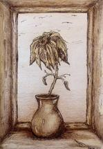 Flower in vase in sepia by Marta