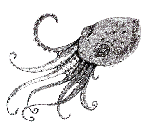 art prints - Octo by Leah Reitz Winter