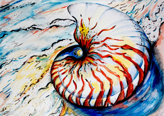 art prints - Sacred Spiral by Leah Reitz Winter