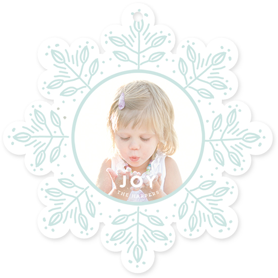 holiday photo cards - Snowflake Scribbles by August and Oak