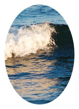 Portrait of a Wave II