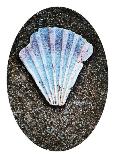 art prints - Seaside Grunge by Catherine Culvenor