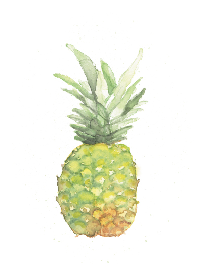 art prints - Piña by Lily Hanna