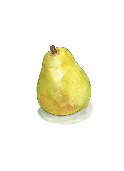 art prints - D'Anjou Pear by Laura Bolter Design
