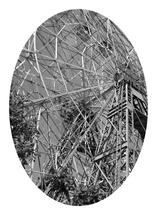 Abstract Big Wheel by Tree Anderson
