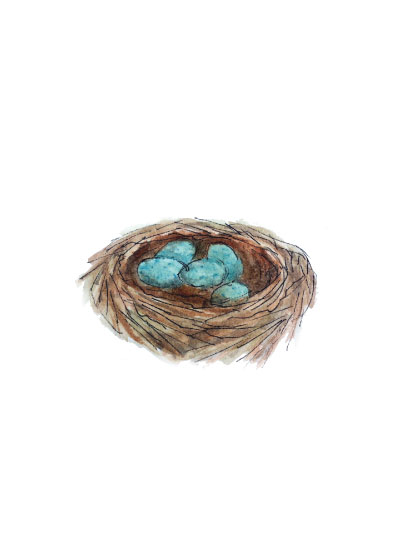 art prints - Bird's Nest by Haley Moore