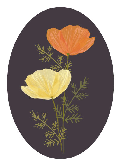 art prints - Poppies by Milk and Marrow