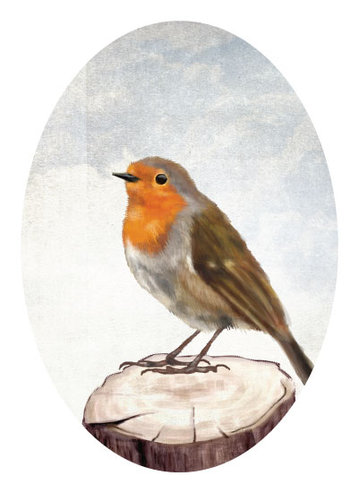 art prints - Robin Bird by iamtanya
