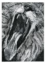 Roar! by Tree Anderson