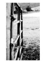 Open Gate by Amanda Miller