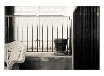 Stillness by Amanda Miller