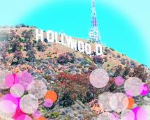 The Hollywood Bubble by Jenny Garvin