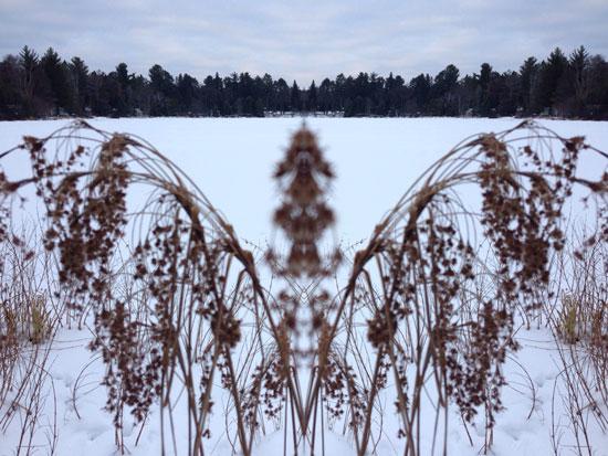 art prints - Wisconsin Winter Beauty by Ellen Hampton