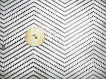 Button on Print by Jessamy Tsoris