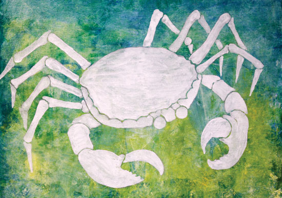 art prints - Not too Crabby by Tess Williams