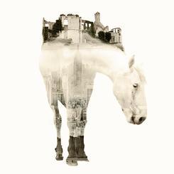 City Horse Double Exposure