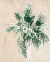 Palmtree by Eileen Tomson