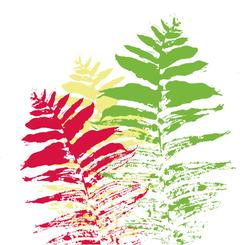 Fern color palooza