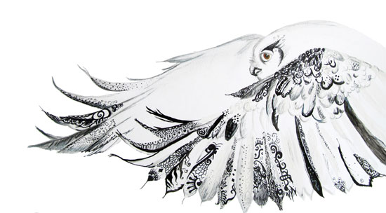 art prints - owl by Jennifer Robison