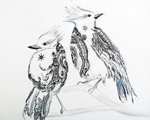 Blue Jays by Jennifer Robison