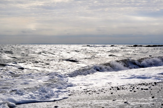 art prints - Silver Shores by Irene Penny at Silver Penny Photography
