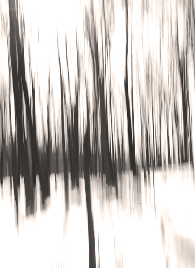 art prints - The Motion of Trees Two by Georgia Bateman