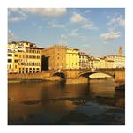 Fiorentina by Imelda Sherlock