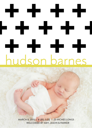 birth announcements - Family Plus One by Green Tie Studio