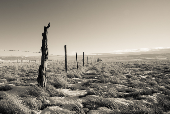 art prints - Montana Pasture by Mark Kirby