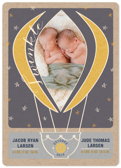 birth announcements - Two Twinkle by Echo Artistry