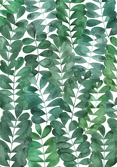 art prints - Robinia Leaves by Natalie Ryan