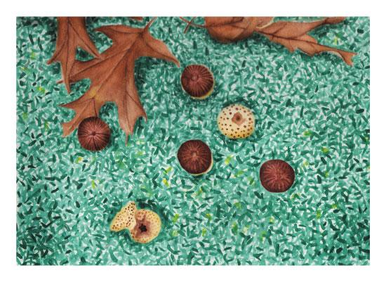 art prints - on the ground by Aspacia Kusulas