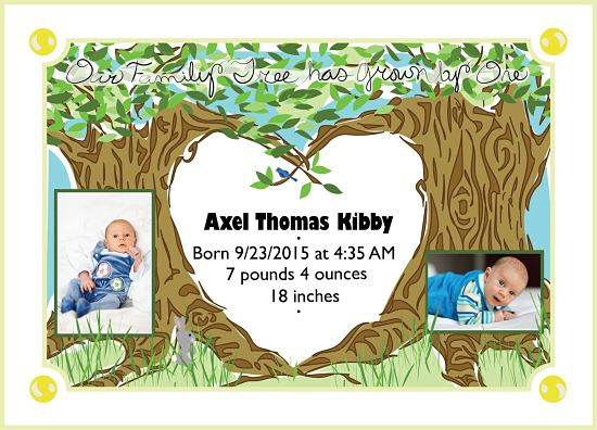 birth announcements - Family Tree by Kimberly Hubbard