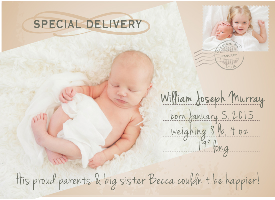 birth announcements - Special Delivery Postcard by Susan Teachey