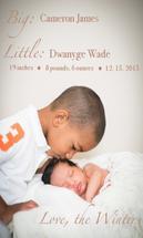 Scripted Siblings by Lynn Shaver