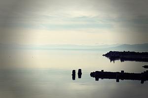 A Vast Sea
