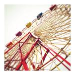 High Roller by Kelly Moeykens