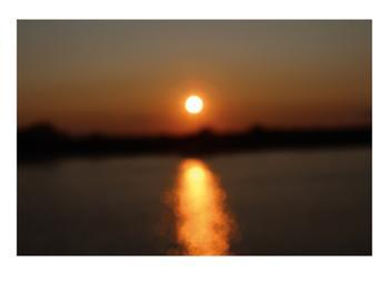 Sparkling Sunset