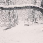 Winter by Jen Bolitho