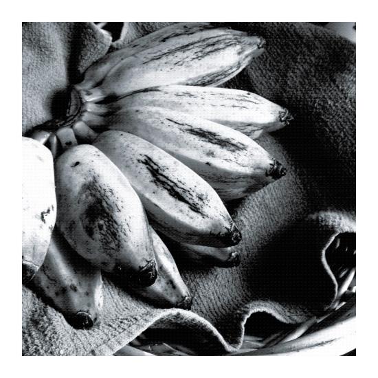 art prints - Tally Me Banana by Christine Simons