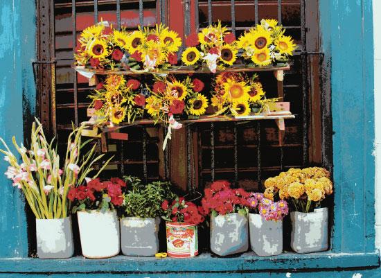 art prints - Window Bouquets by KC Design