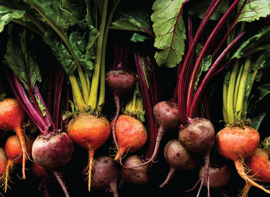 art prints - Eat Your Beets by Amy Roth