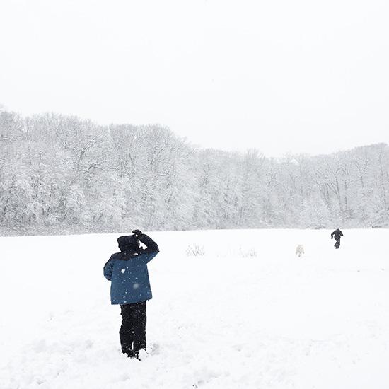 art prints - First Snow by Jen Bolitho