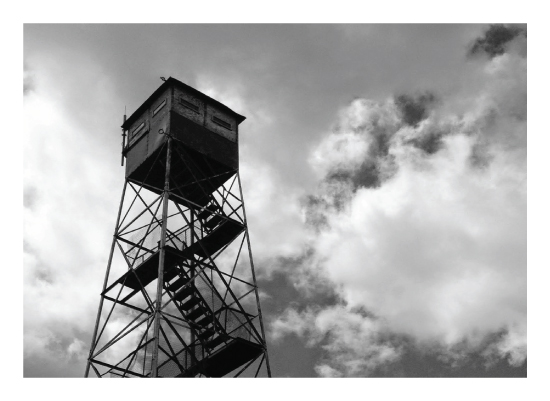 art prints - Adirondack Fire Tower by Anne Peck