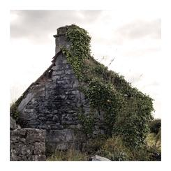 Cottage Remains