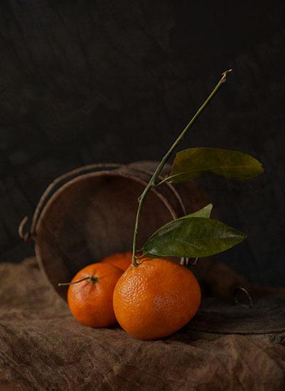 art prints - Bucket of Oranges by Dawn Rabinowitz