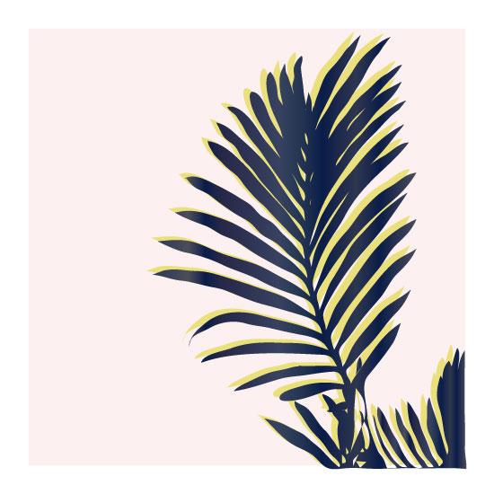art prints - Palm Study #2 by Cindy Lackey