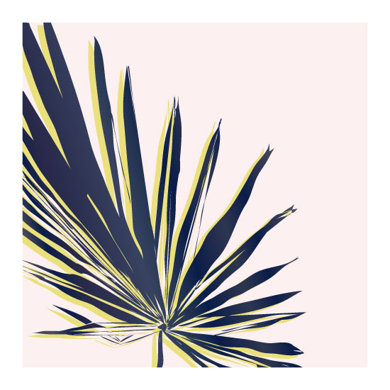 art prints - Palm Study #1 by Cindy Lackey