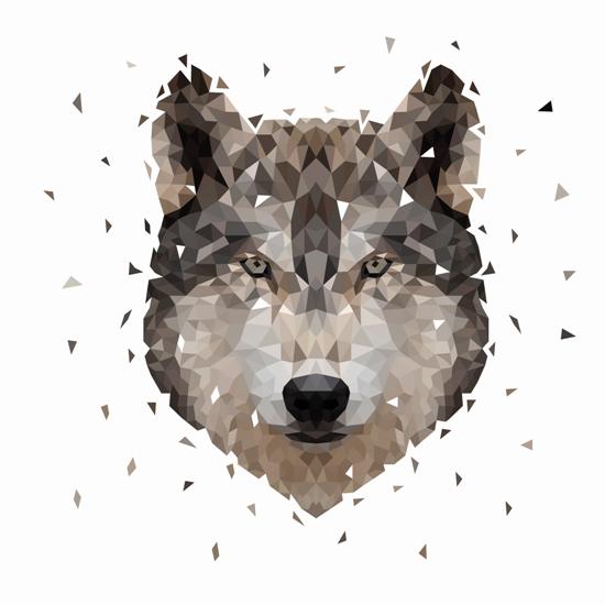 art prints - Wolf by Onysia Kolesnikova