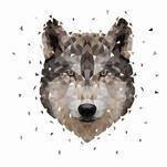 Wolf by Onysia Kolesnikova